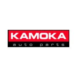 Toyota Aygo 2005 - 2014 salona gumijas paklājiņu kompl.