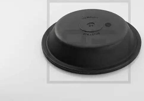 PE Automotive 076.405-10A - Membrāna, Atsperes energoakumulatora cilindrs autodraugiem.lv